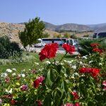 Вибір туроператора для поїздки до Туреччини